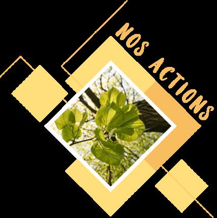 NOS-ACTIONS-NOVENCIA
