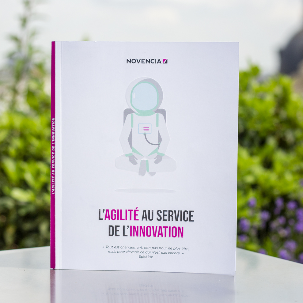 "Photo de l'Ebook ""L'Agilité au service de l'innovation"""